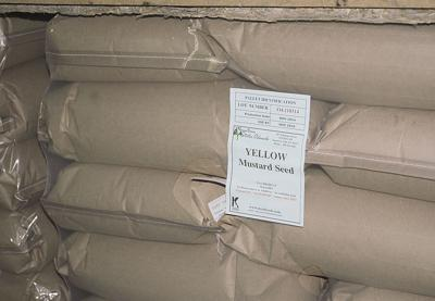 Flat oilseed prices expected