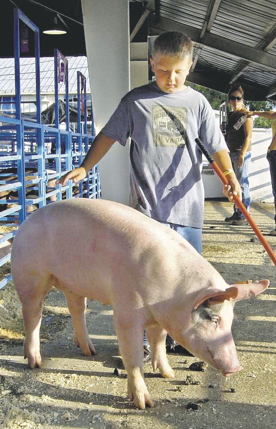 China to lift swine flu-inspired ban on US pork