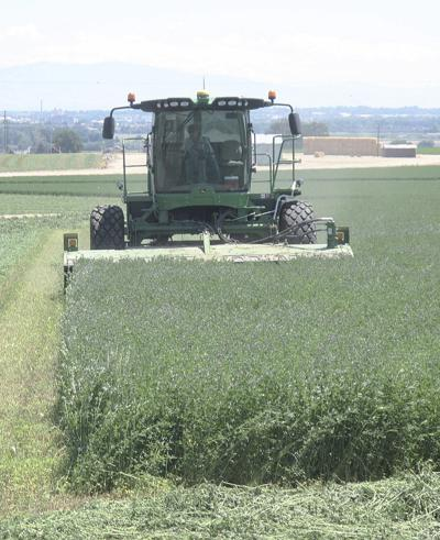 Agriculture's importance to Idaho continues to grow