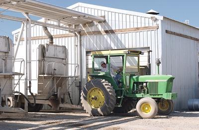Tax breaks for mint processors, tractor buyers under scrutiny