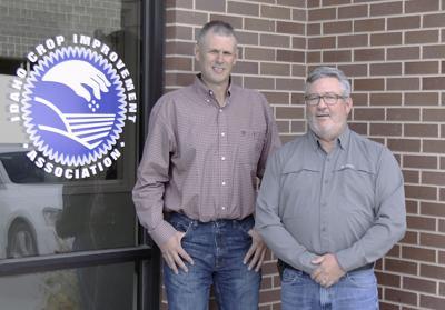 Idaho Crop Improvement Association safeguards seed purity