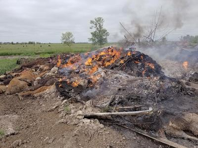 Burn pile