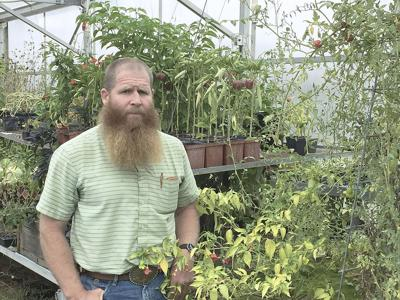 East Idaho high school students partner on forage research