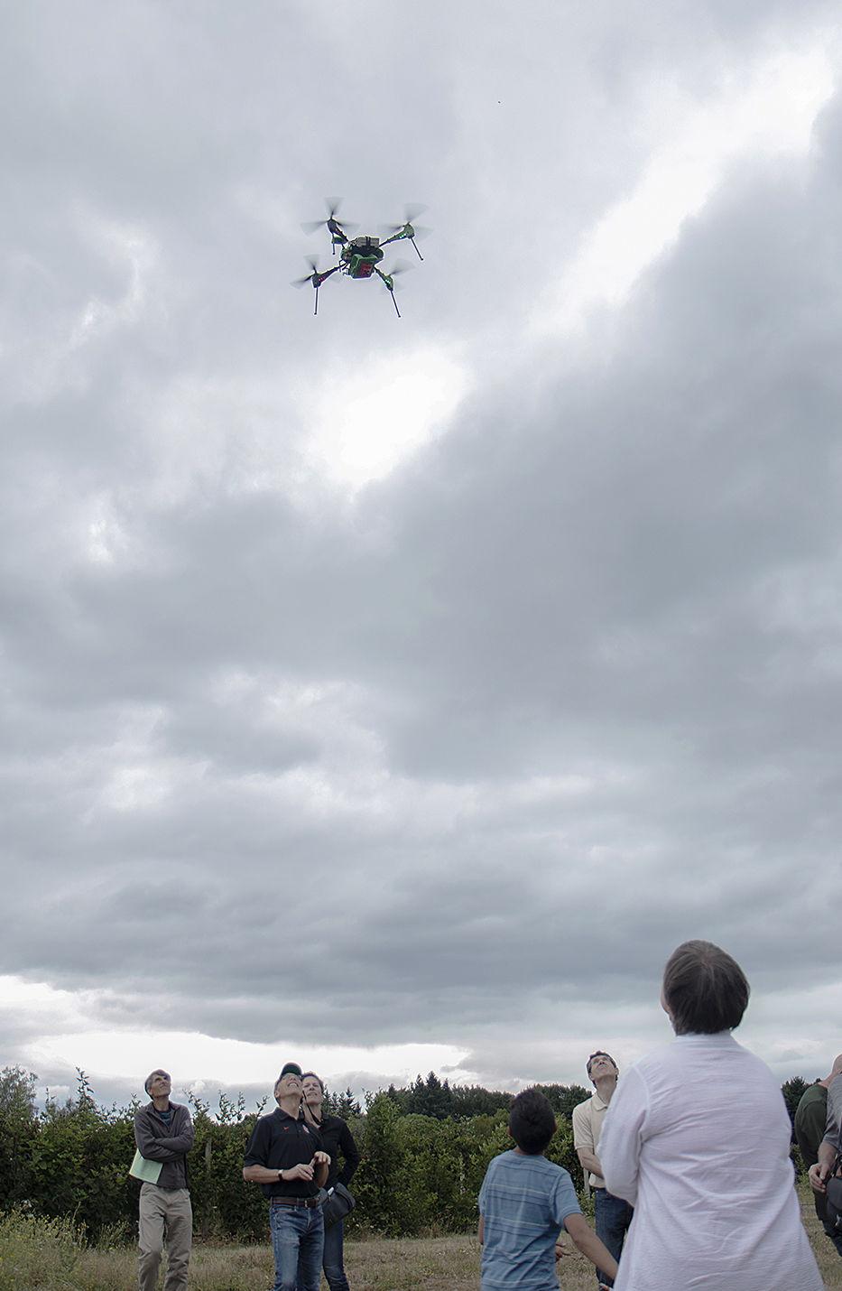 Drones blueberries 2