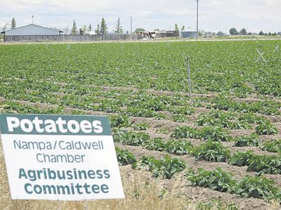 Field signs promote ag in Idaho county