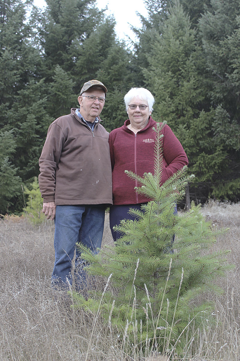 Tree Farmers of the Year 2