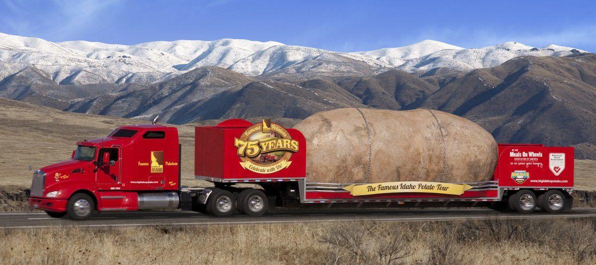Giant spud begins 32-state journey