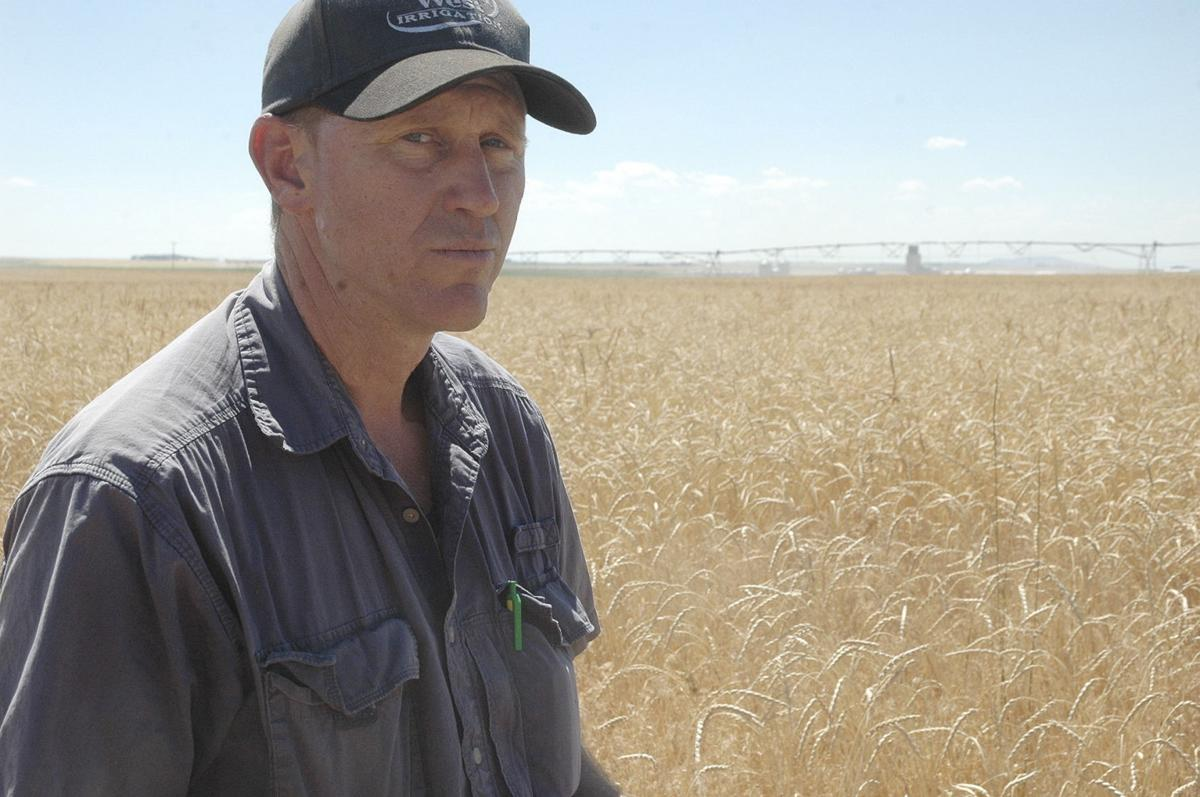 East Idaho grower finds niche with spelt