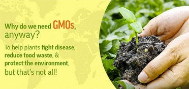 GMO Answers website attracts more than 2 million visits a year