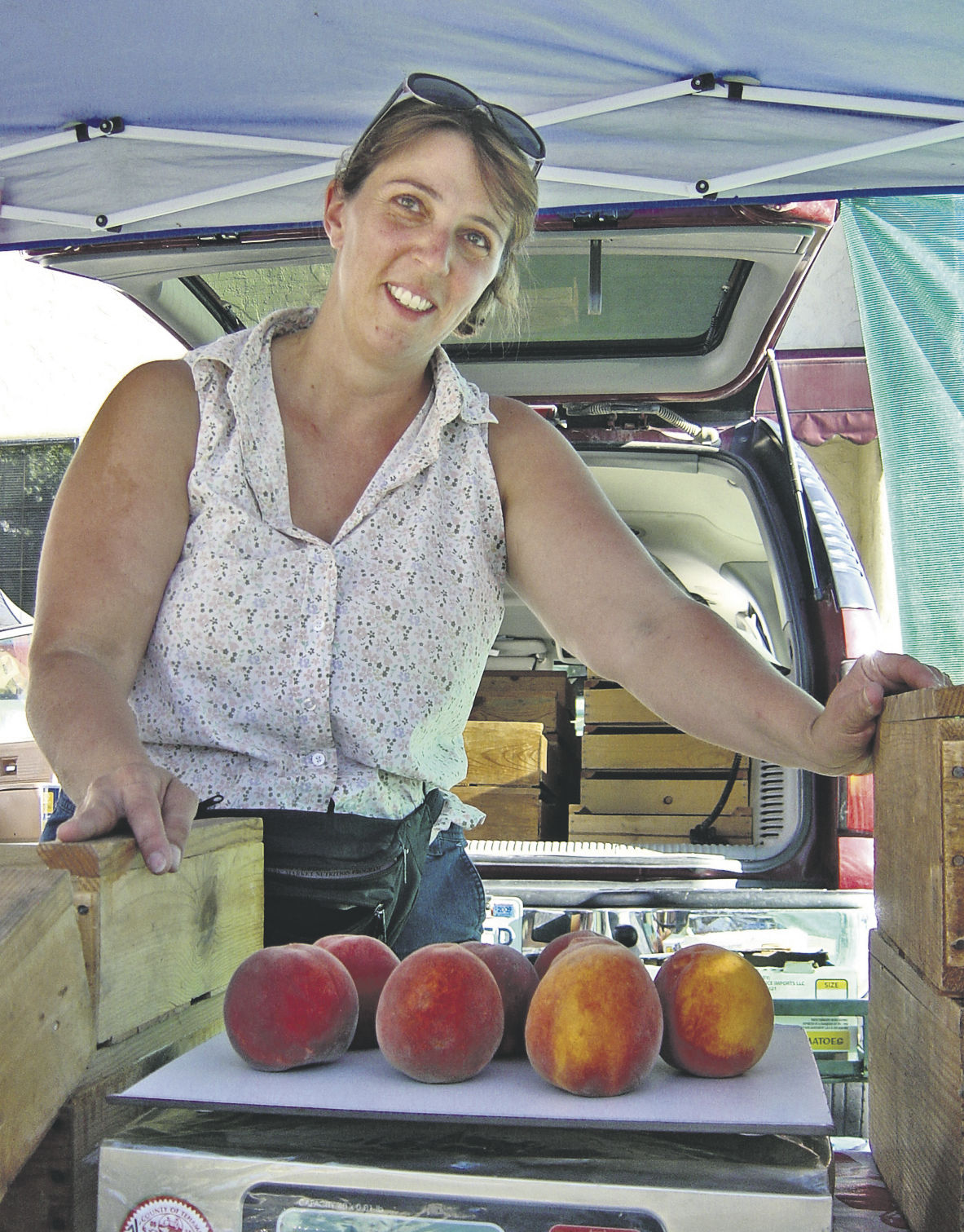 Growers find bargains at markets