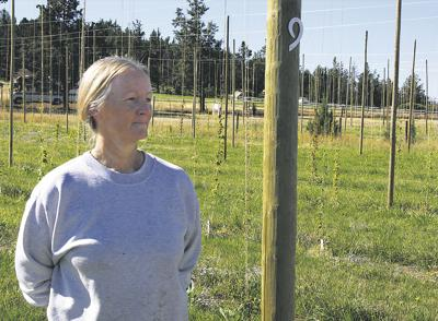 Hops spread to Central Oregon