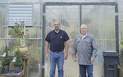 Oregon Valley Greenhouses provides advice on structures