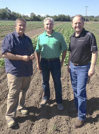 Bankers, lenders weigh in on the business of ag