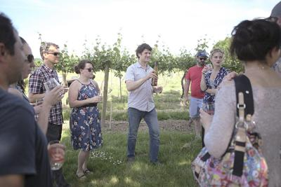 Vineyard poses challenges, opportunities for winemaker