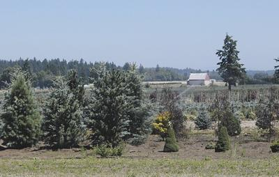 Cities pan county's bid to change zoning of ag land