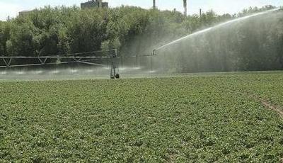 groundwater curtailment