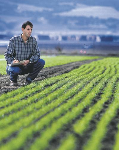 For researcher, organic farming comes naturally