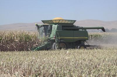Input price declines can't make up for low crop prices