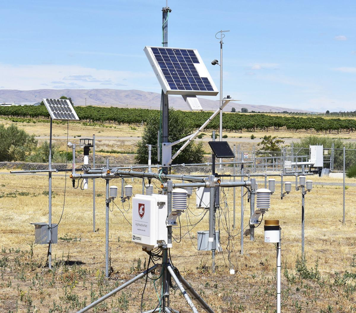 Remote weather stations prove their value to farmers