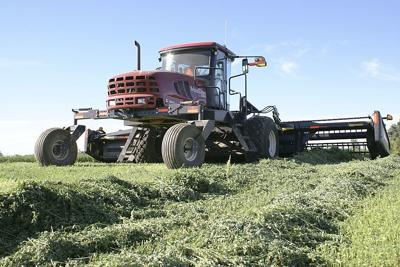 Hay prices respond to good demand