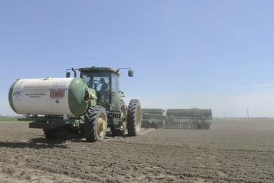 Washington resumes its hemp program