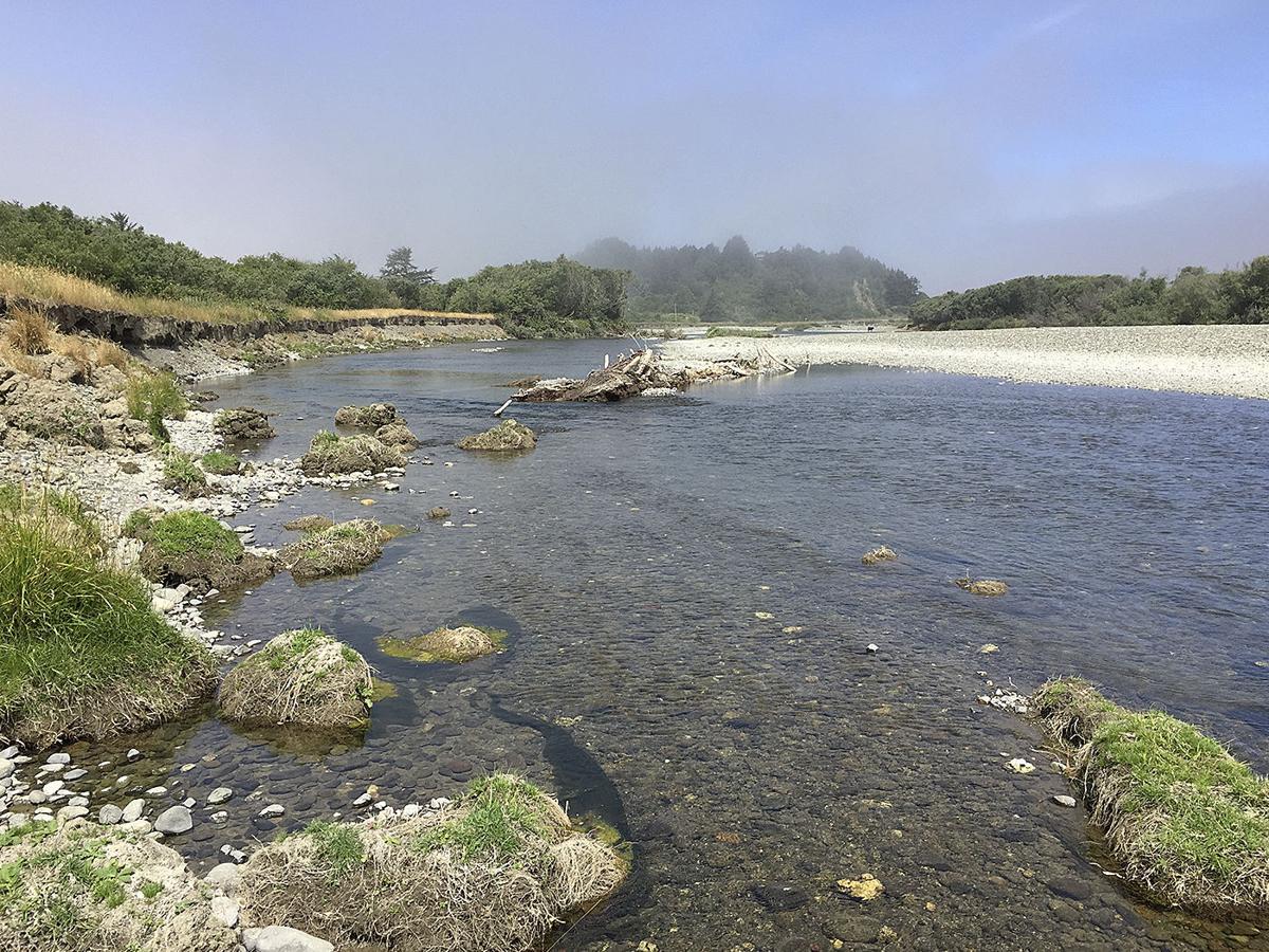 Pistol River erosion