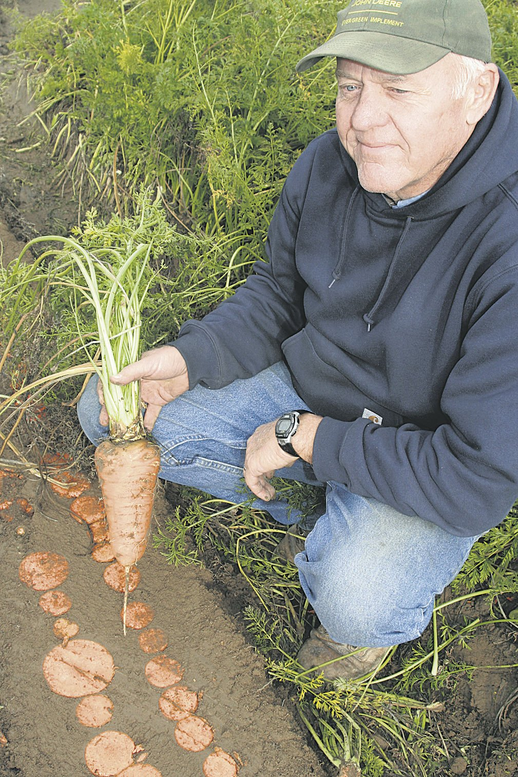 Grower goes for the big carrot