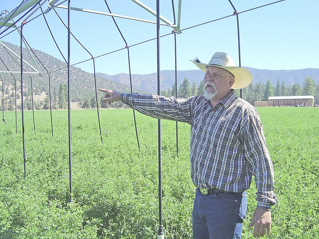 UC test projects help Scott Valley rancher conserve water