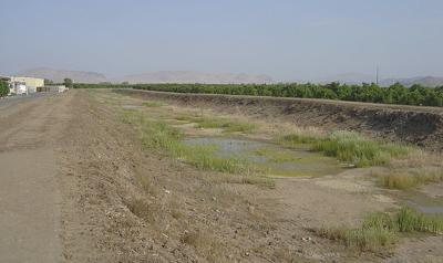 Fresno State drought study seeks consensus on water use