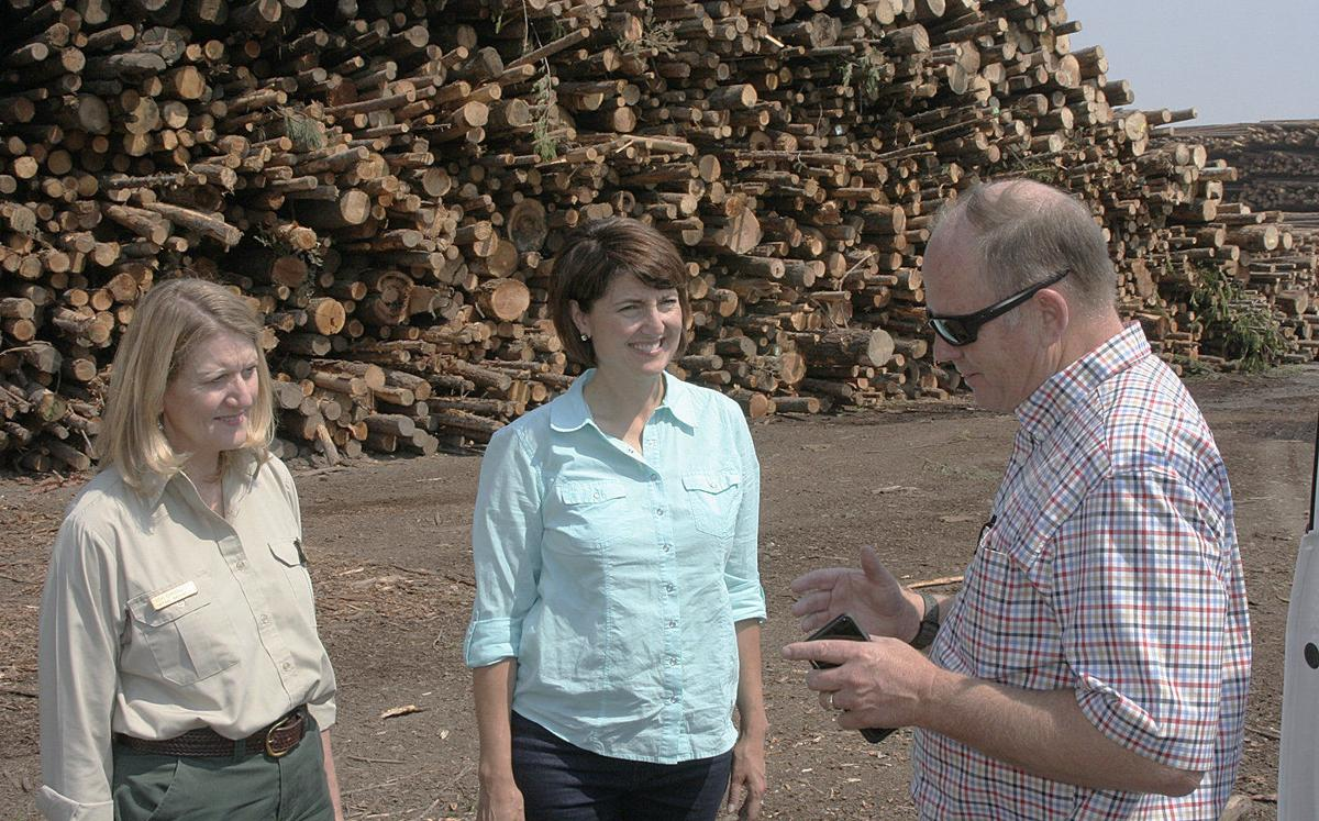 U.S. Forest Service interim chief tours A to Z Project