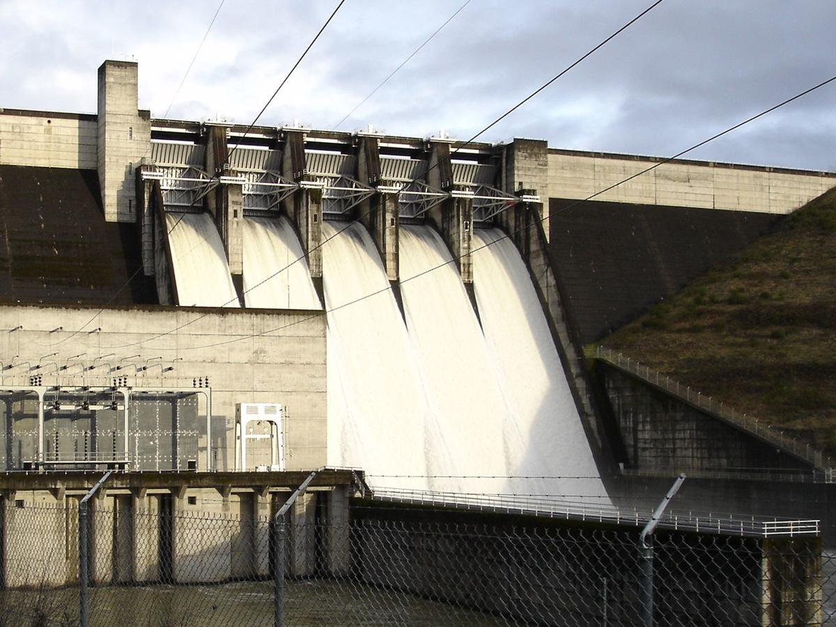 Corps divvies up Willamette River Basin water