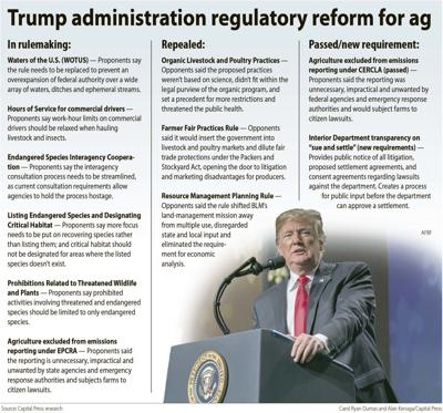Trump reforms for ag