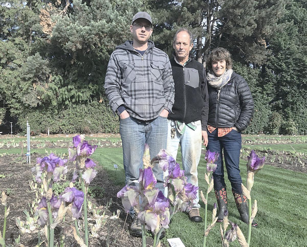 Variety makes irises irresistible