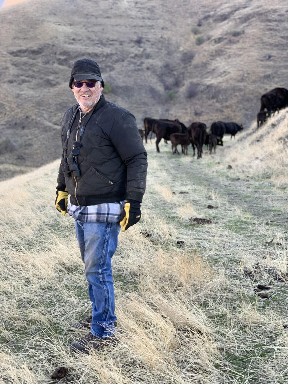 Jerry Reeves & cows on winter pasture.jpg