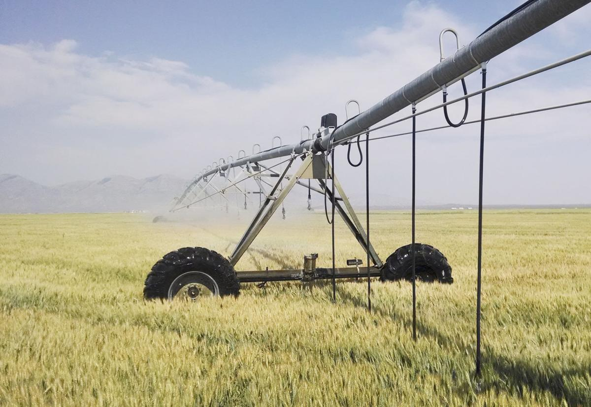Irrigation innovations abound to increase productivity