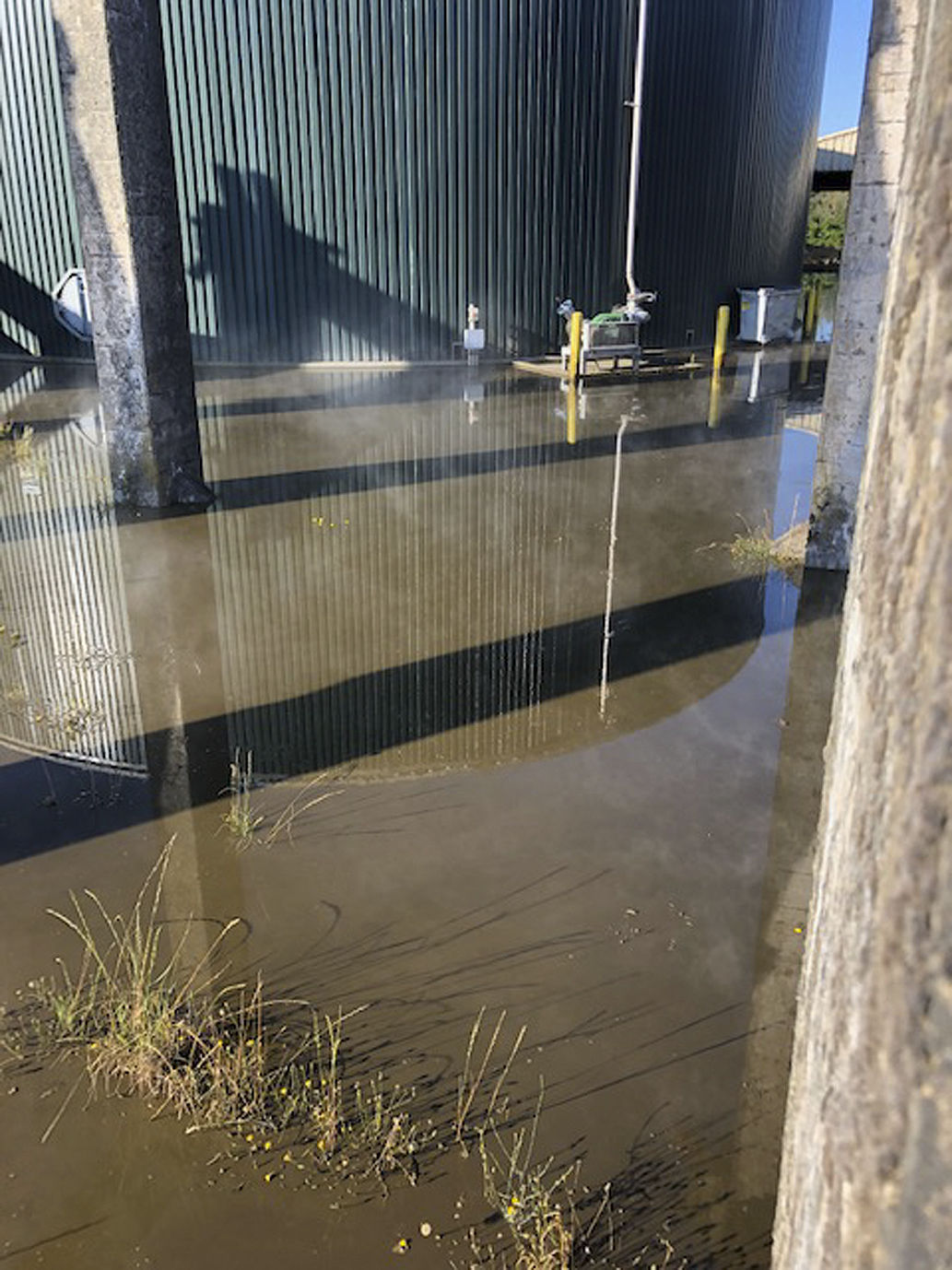 Cleanup underway after manure digester spill near Tillamook