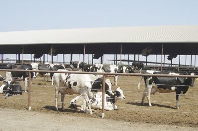 U.S. agriculture applauds NAFTA replacement