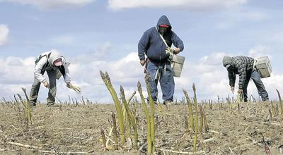 Cold, wet weather halts field work