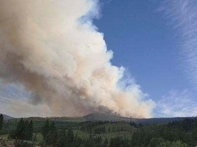 Rangeland association calls for partnership with Forest Service