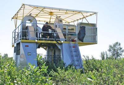 GP Blueberry harvester.jpg