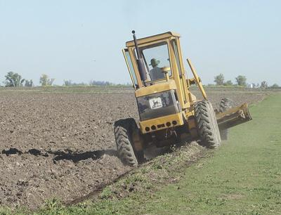 Rice planting proceeds as water availability varies