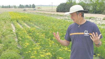 Project helps farmers sell native plants