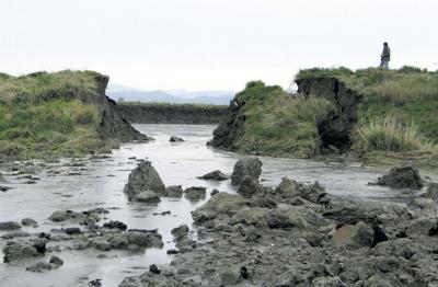 Officials seek cause of lagoon failure