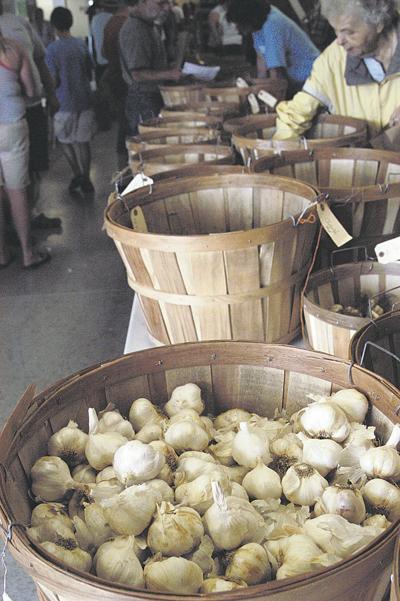 Garlic farm specializes in diverse strains