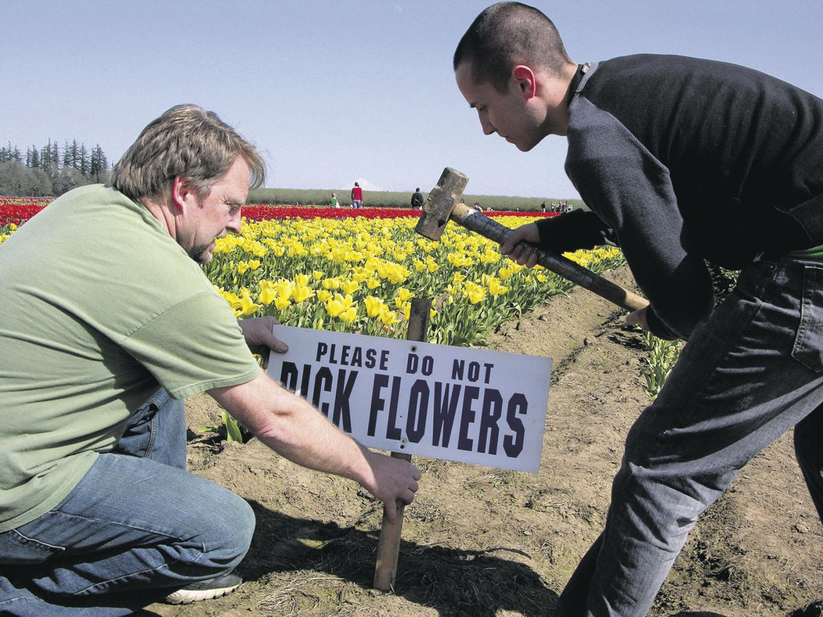 Flower growers greet spring with optimism