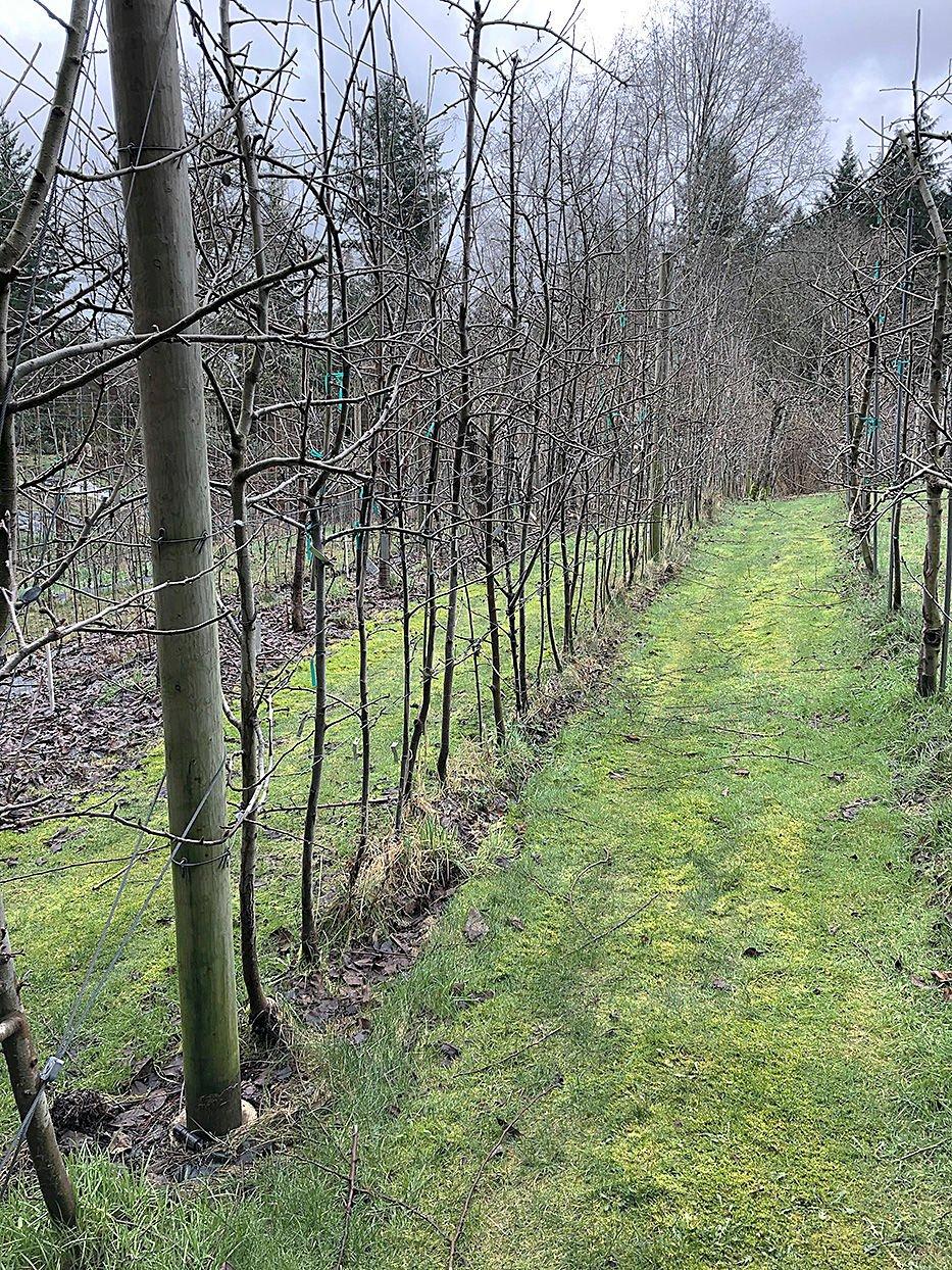 ONV Butler's Farm 3
