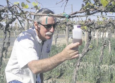 Grant bolsters war against new pest