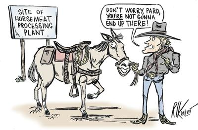 Horse slaughter offers a needed option