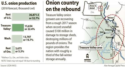 Onion country map and chart