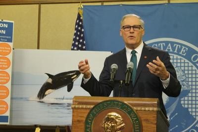 Washington Gov. Jay Inslee proposes orca task force